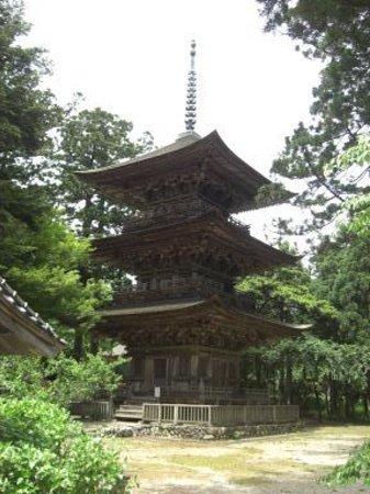 Tainai, Japan: 重文の三重塔