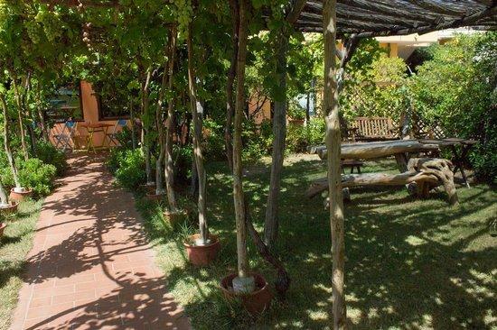 Ariadimari Hotel: jardin