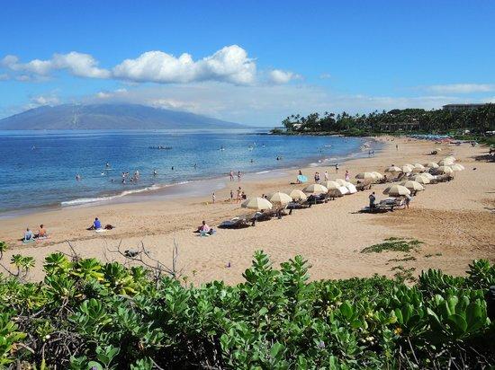 Wailea Beach : The beach