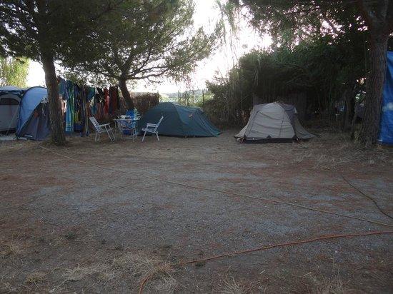emplacement de tente photo de camping la tour fondue giens tripadvisor. Black Bedroom Furniture Sets. Home Design Ideas