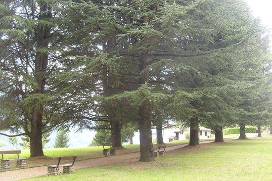 Borgo Zen: il parco