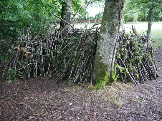 Tipi Holidays in France: A shelter built by teenage resident(s?). Material and support provided by Nigel.