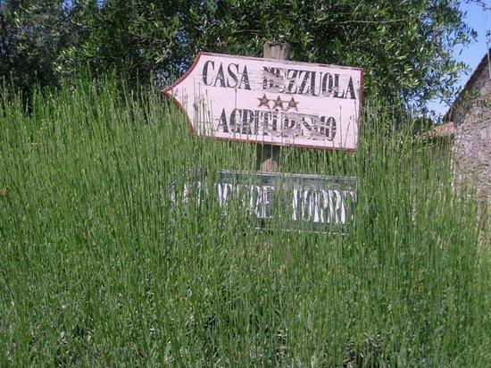 Casa Mezzuola Agriturismo: the way to our accomodation