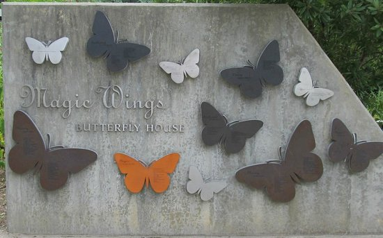 Museum of Life + Science: Sign at the butterfly house