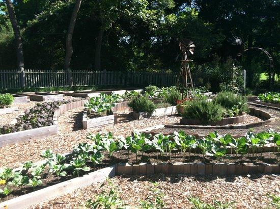 Inn at Serenbe: gardens