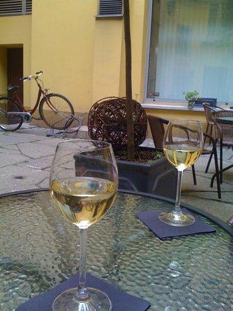 Winnica na Solnym