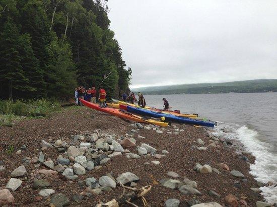 North River Kayak Day Tours: Shoreside