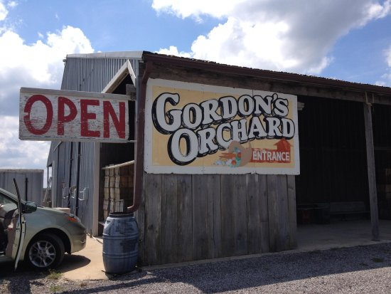 Gordon's Orchard