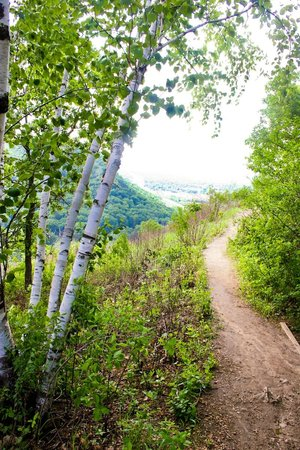 Garvin Heights hiking trails