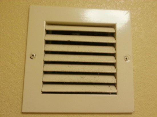 EconoLodge Inn & Suites: bathroom vent..yuck!