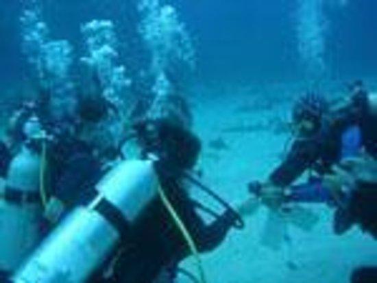 Scuba Dive It: class