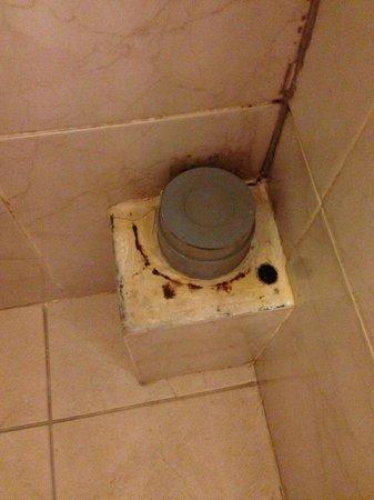 Northfields Hostel: Ding in der Dusche