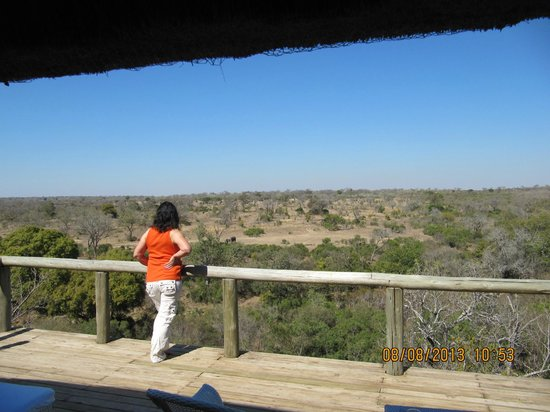 Leopard Hills Private Game Reserve: Balcony view room 8