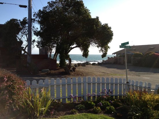 Cayucos Motel: Garden area with view