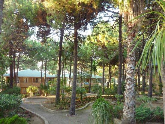 Motel Les Pins : Résidence sous les Pins