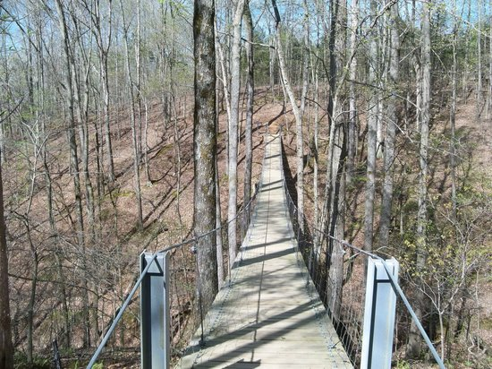 Tims Ford State Park: Cool suspension bridge