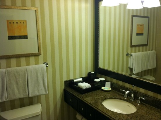 Hyatt Regency Reston: bathroom