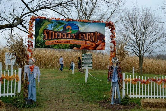 Bluff City, TN: Entrance to the Corn Maze