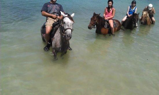 Seaside Nature Park : cooling off