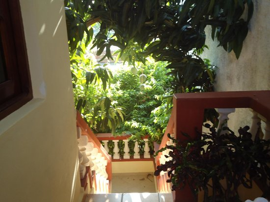 Hostal Puerto Casilda: Area de recreacion