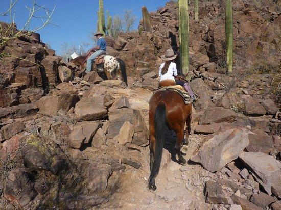 White Stallion Ranch : Mountain Ride