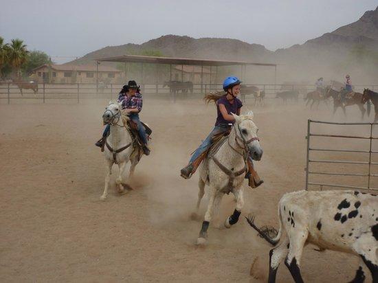 White Stallion Ranch : Round Up