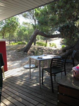 Belambra Clubs - Les Vignes : terrasse