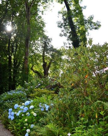 Plas Cadnant Hidden Gardens: Upper Valley