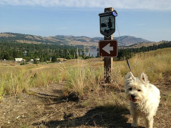 Republic, WA: Hiking Trails at Curlew Lake Washington State Park