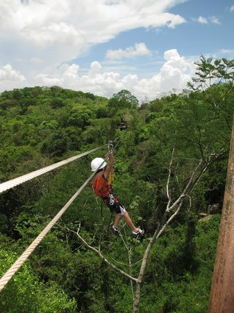 Calico Jack's Belize Jungle Canopy and Zip Lining: The final line.