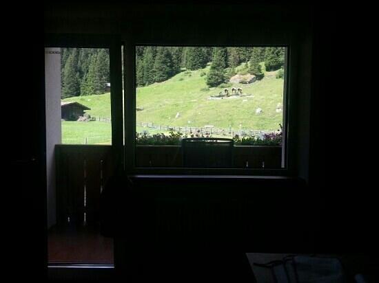 Erstes Kinder- & Gletscherhotel Hintertuxerhof: una parte del panorama dalla ns.stanza