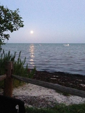 Long Key State Park: Full moon from our campsite.