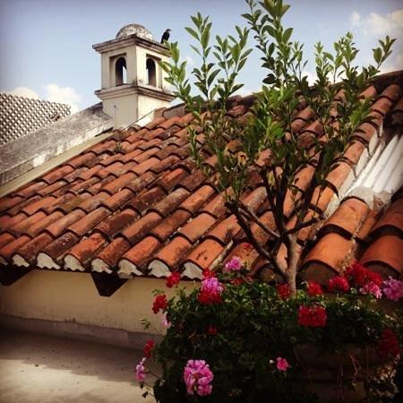 Hotel Sor Juana: Antigua rooftop