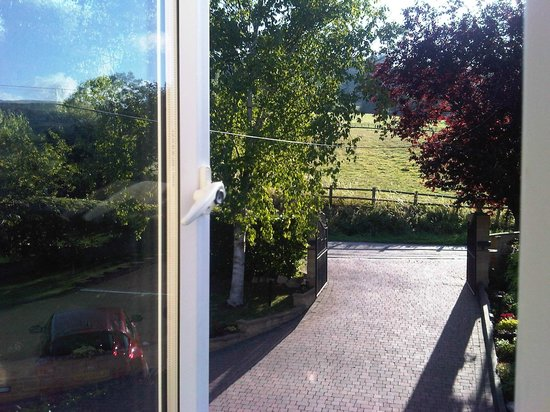 Homelands Bed and Breakfast: view from the room