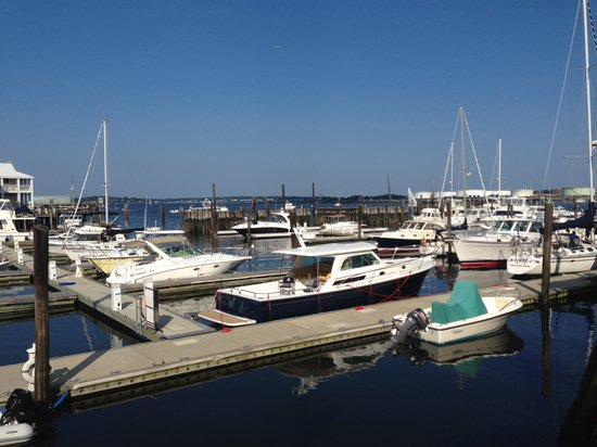 DiMillo's Old Port Marina : marina view