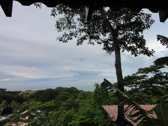 Casa MarBella: The view