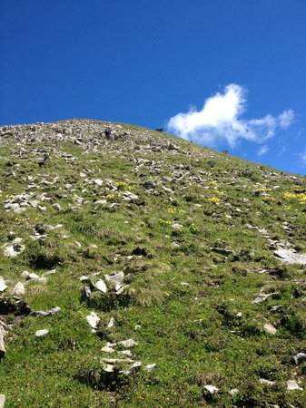 Faulhorn: Walking up the steeper side