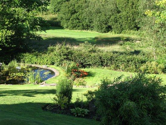 Mellieha Guest House : The garden
