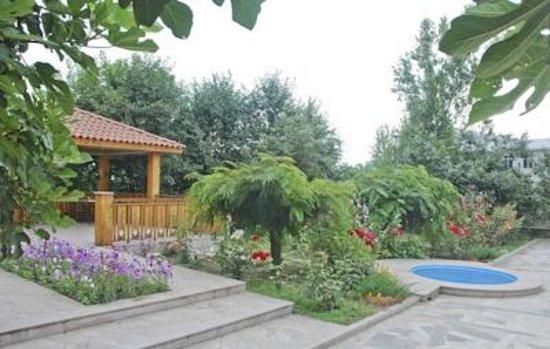 Heghnar hotel: Rear Garden