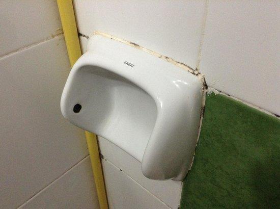 iHouse: Toilet