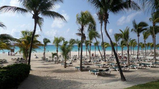 Hotel Riu Lupita: strand