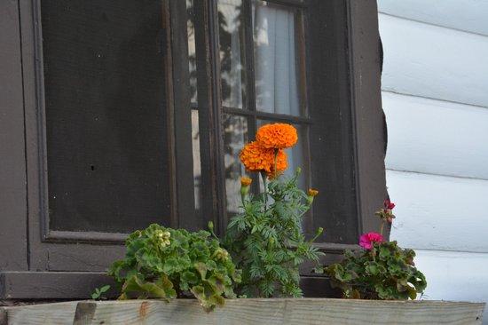 Minnetonka Resort: pretty window box