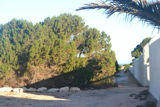 Punta Rasa: Paisaje