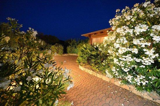 Ragno d'Oro Club Hotel: Garten