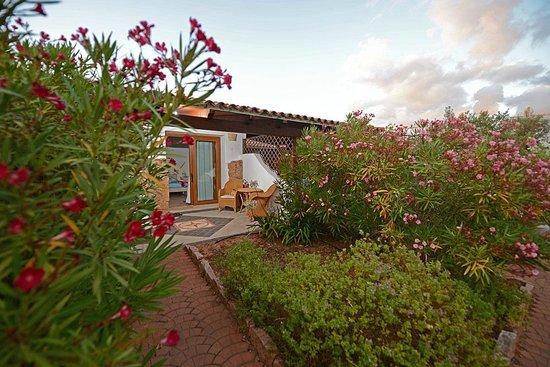Ragno d'Oro Club Hotel: Unsere Terrasse