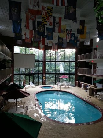 Super 8 Eureka Springs: pool and HOT TUB!