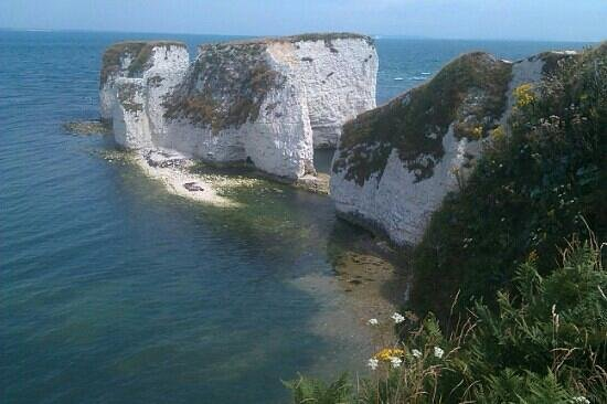 Studland Bay, UK: old harry rocks
