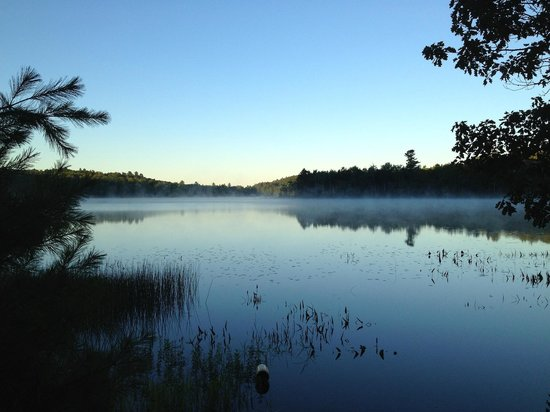 Williams Pond Lodge: View from kayak launching area at 6am