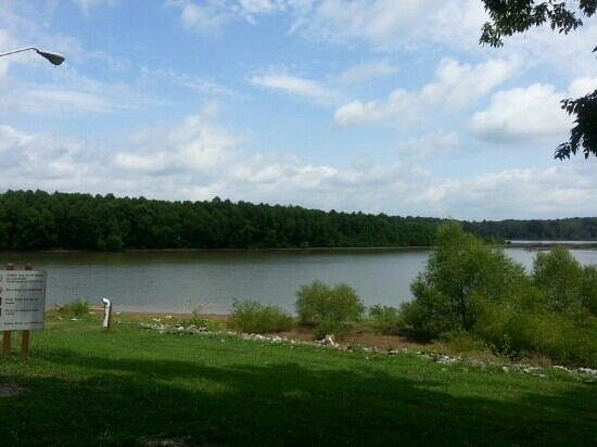 Staunton River State Park: A view of the river