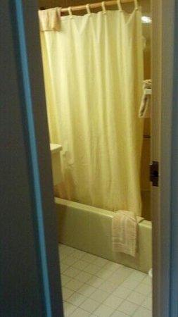 Holly Tree Resort : badroom
